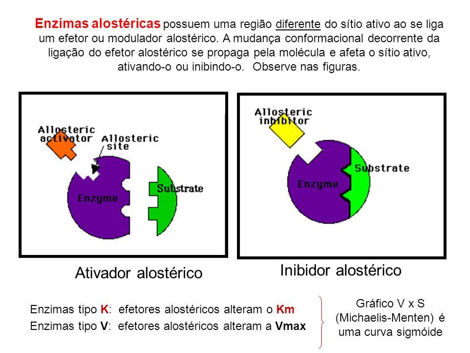 Ativador alostérico Inibidor alostérico Enzimas tipo K: efetores alostéricos alteram o Km Enzimas tipo V: efetores alostéricos alteram a Vmax Enzimas