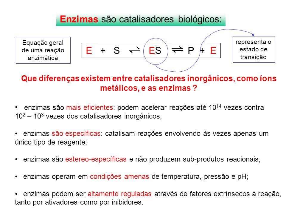 Enzima Velocidade na ausência de enzima Reações/segundo Velocidade da reação catalisada Reações/segundo Poder catalítico Anidrase carbônica H 2 O 2 H 2 O + ½ O 2 Triosefosfato isomerase Carboxipeptidase A AMP nucleosidase Nuclease de estafilococos 1.3 X 10 –1 4.3 X 10 –6 3.0 X 10 –9 1.0 X 10 –11 1.7 X 10 -13 1.0 X 10 6 4.300 578 60 95 7.7 X 10 6 1.0 X 10 9 1.9X 10 11 6.0 X 10 12 5.6 X 10 14 Número de turnover ou de renovação: quantas vezes a enzima completa o ciclo da reação em um segundo Enzimas acelaram reações várias ordens de grandeza Compare esses números .