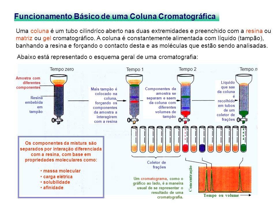 Concentração Tempo ou volume Coletor de frações Funcionamento Básico de uma Coluna Cromatográfica Uma coluna é um tubo cilindríco aberto nas duas extr