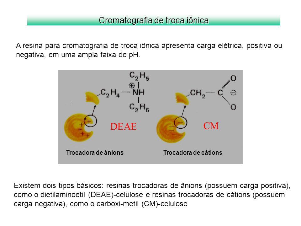 Cromatografia de troca iônica A resina para cromatografia de troca iônica apresenta carga elétrica, positiva ou negativa, em uma ampla faixa de pH. Tr