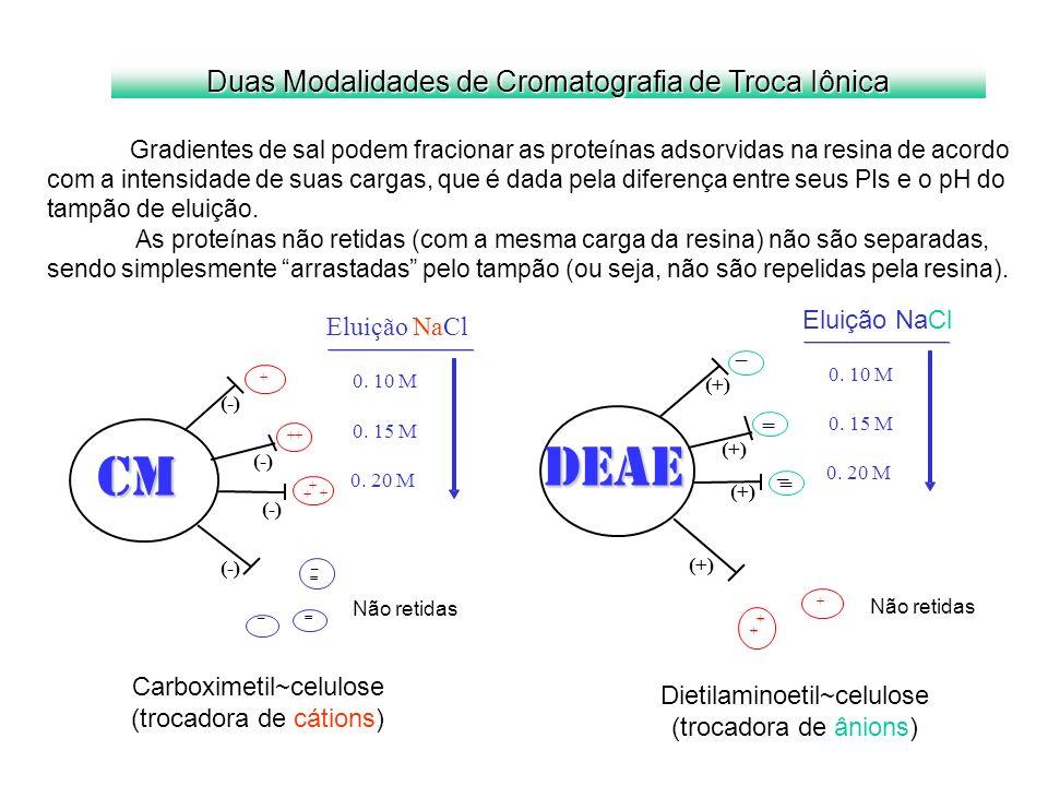 Carboximetil~celulose (trocadora de cátions) Dietilaminoetil~celulose (trocadora de ânions) Duas Modalidades de Cromatografia de Troca Iônica Gradient