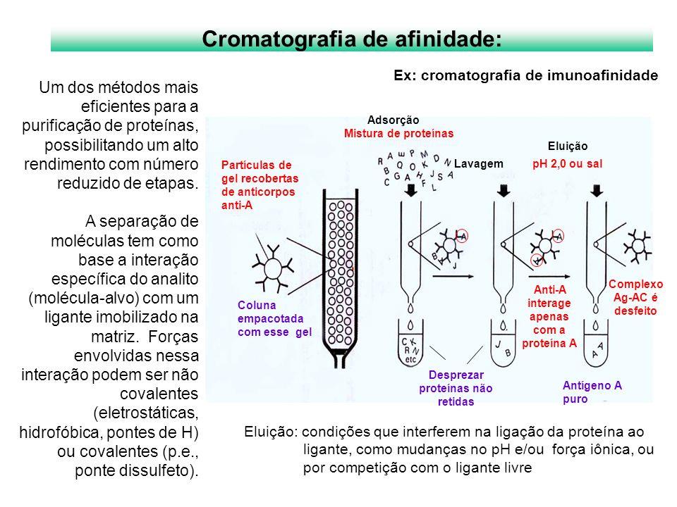 Cromatografia de afinidade: Eluição: condições que interferem na ligação da proteína ao ligante, como mudanças no pH e/ou força iônica, ou por competi