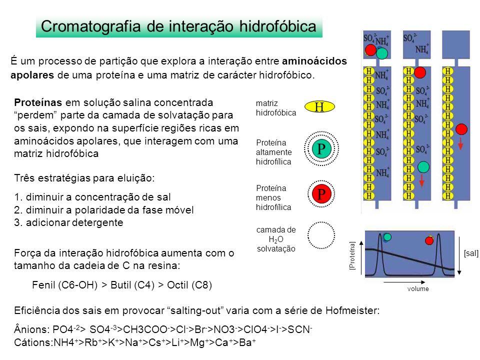 Cromatografia de interação hidrofóbica É um processo de partição que explora a interação entre aminoácidos apolares de uma proteína e uma matriz de ca