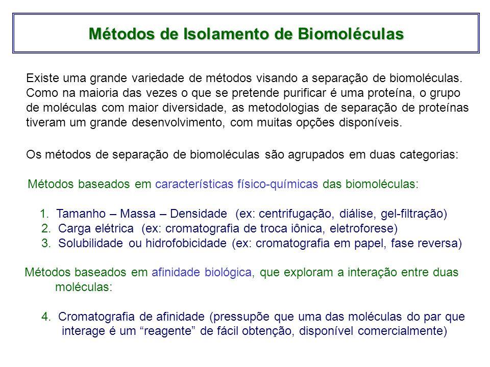 Métodos baseados em características físico-químicas das biomoléculas: 1. Tamanho – Massa – Densidade (ex: centrifugação, diálise, gel-filtração) 2. Ca