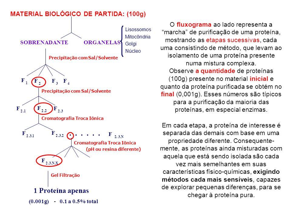 Solventes miscíveis com a água diminuem a constante dielétrica do meio e desorganizam a camada de solvatação das proteínas.