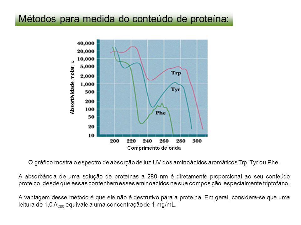 Métodos para medida do conteúdo de proteína: O gráfico mostra o espectro de absorção de luz UV dos aminoácidos aromáticos Trp, Tyr ou Phe. A absorbânc