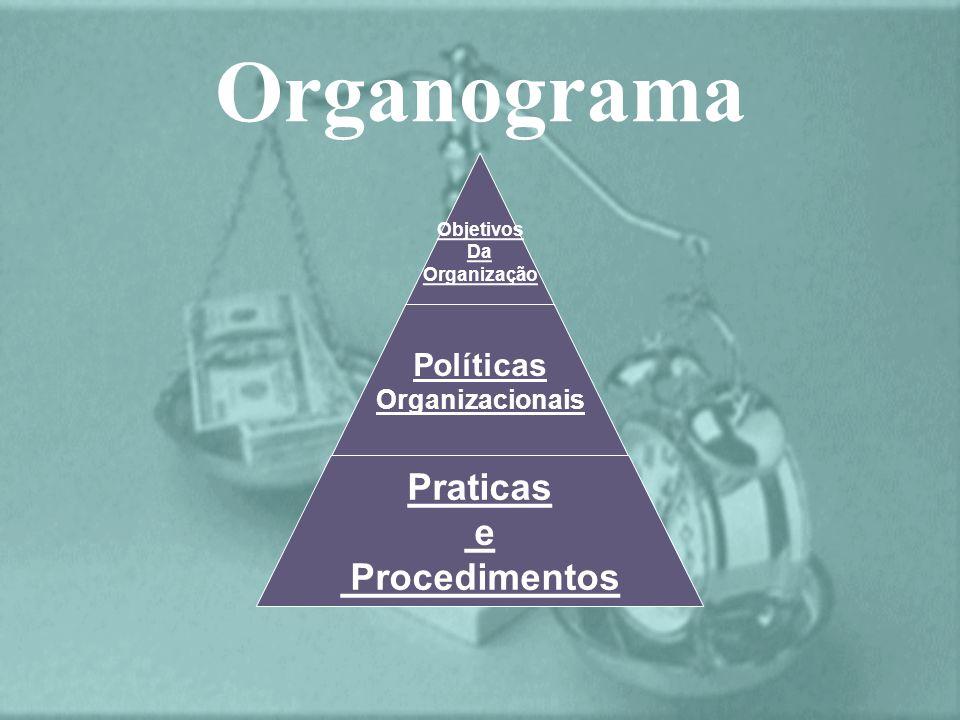 Organograma Objetivos Da Organização Políticas Organizacionais Praticas e Procedimentos