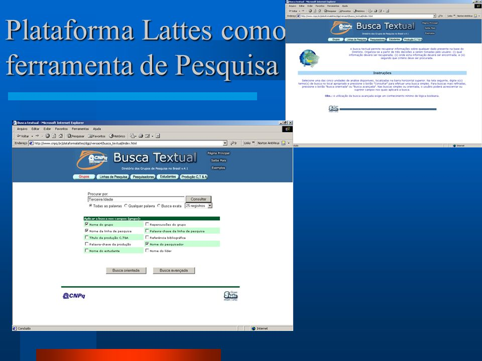 Plataforma Lattes como ferramenta de Pesquisa Projetos de Pesquisa Pesquisadores Mestres e Doutores Grupos de Pesquisa Agências de Fomento Técnicos Es