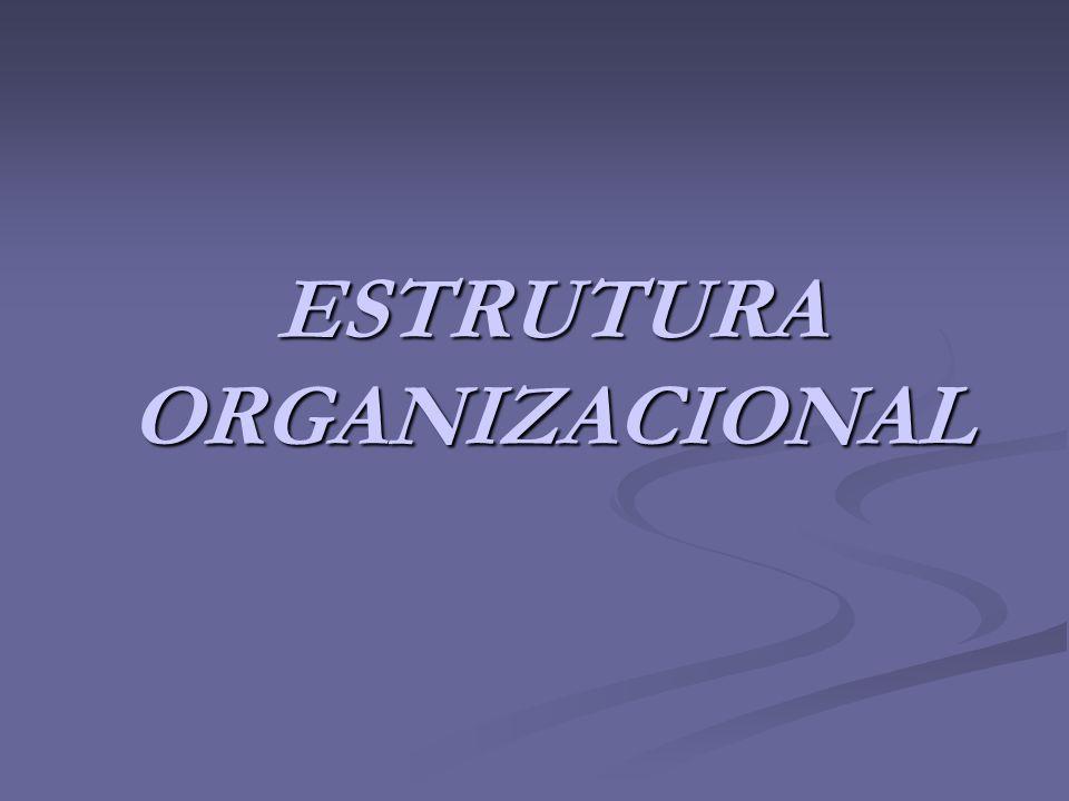Organização da empresa é a ordenação Organização da empresa é a ordenação e o agrupamento de atividades e e o agrupamento de atividades e recursos, visando ao alcance de recursos, visando ao alcance de objetivos e resultados estabelecidos.