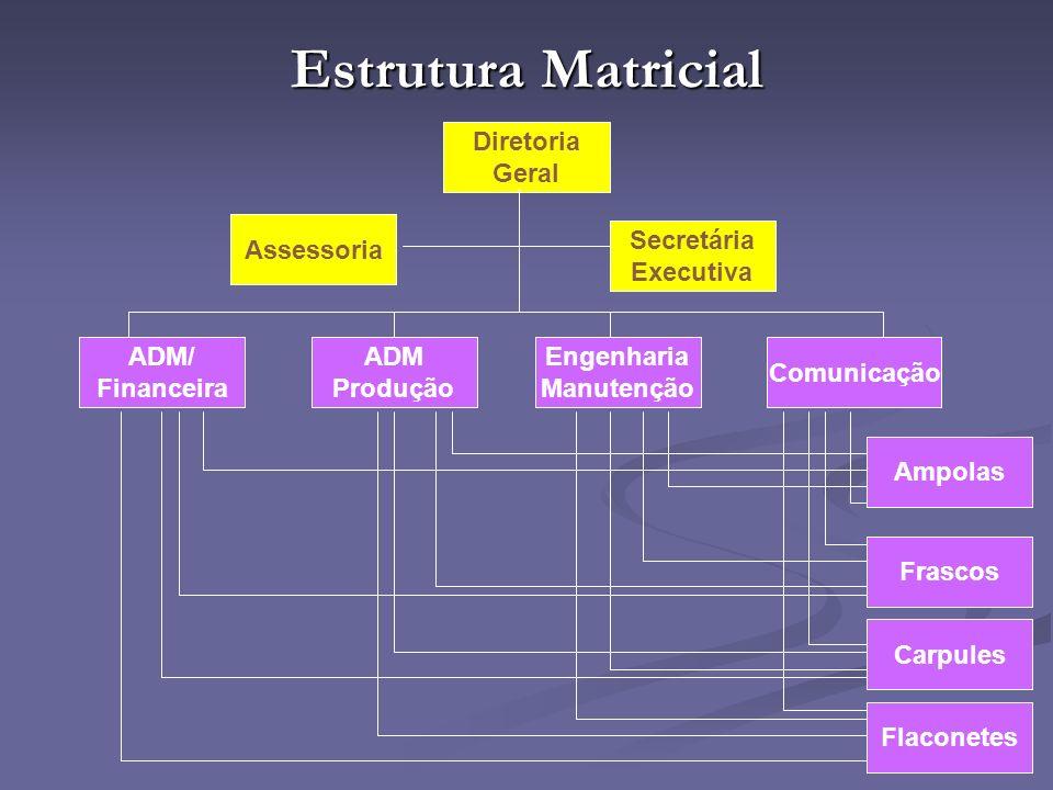 Estrutura Matricial Diretoria Geral Assessoria Secretária Executiva ADM/ Financeira ADM Produção Engenharia Manutenção Comunicação Ampolas Flaconetes