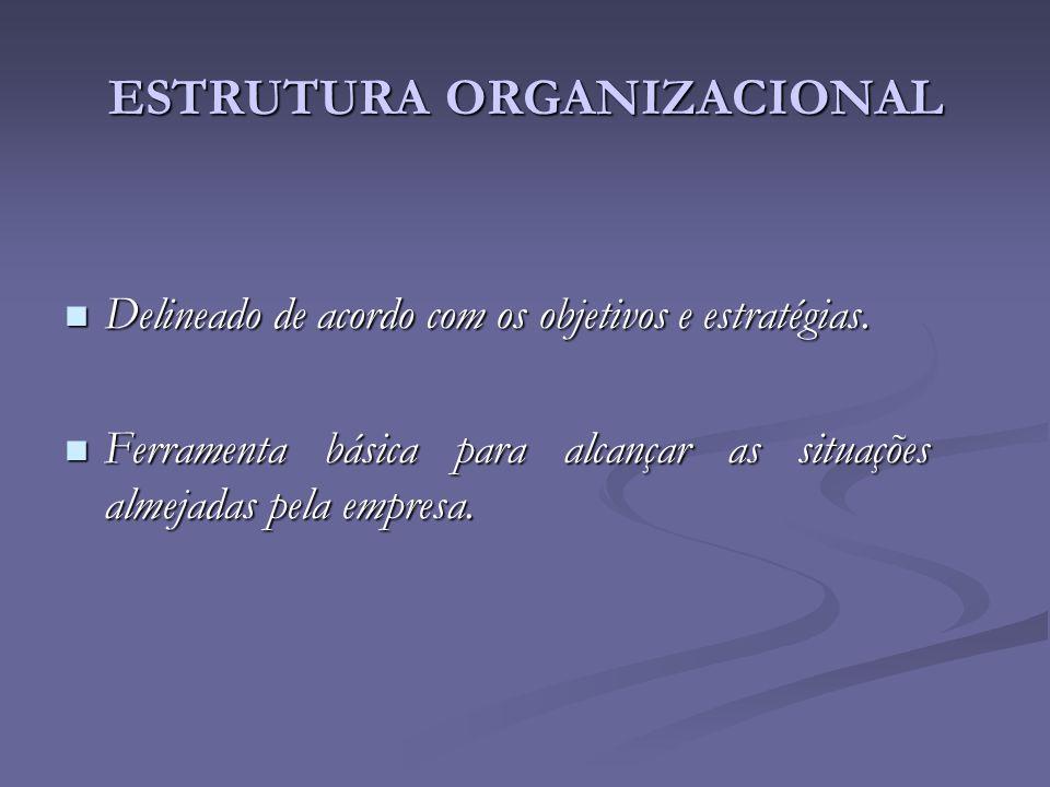 Delineado de acordo com os objetivos e estratégias. Delineado de acordo com os objetivos e estratégias. Ferramenta básica para alcançar as situações a