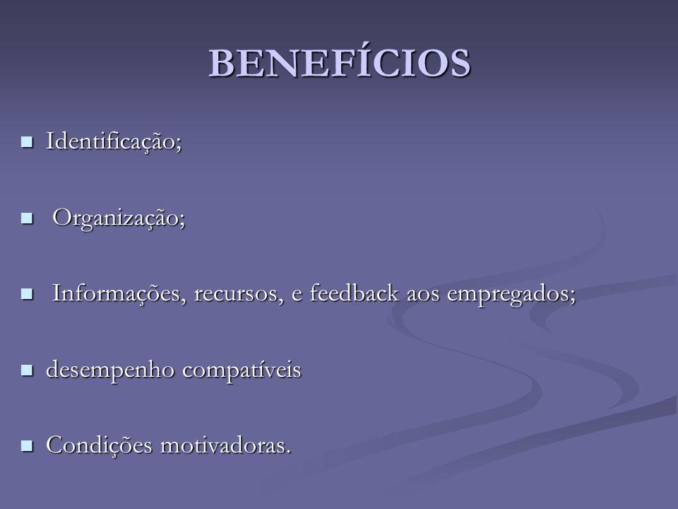 Identificação; Identificação; Organização; Organização; Informações, recursos, e feedback aos empregados; Informações, recursos, e feedback aos empreg