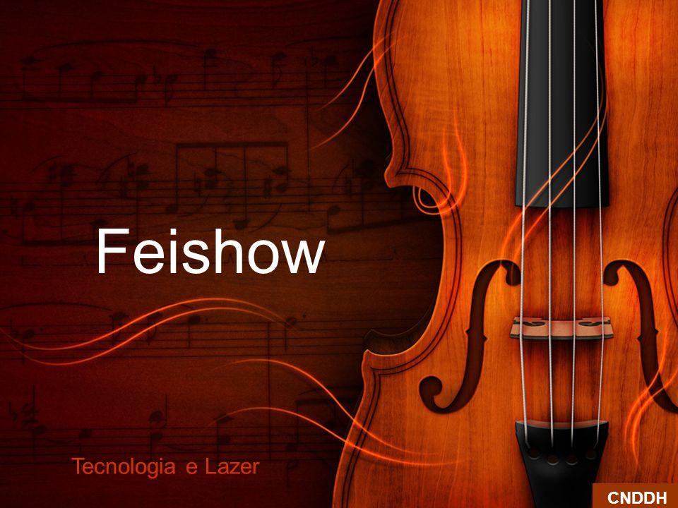 Feishow Tecnologia e Lazer CNDDH