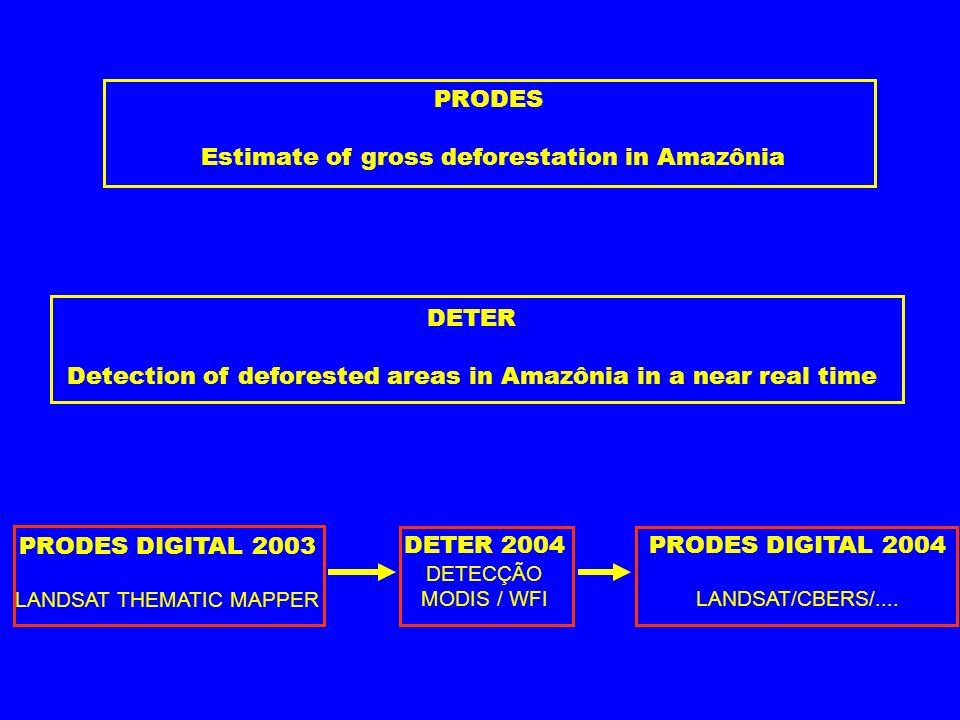PRODES DIGITAL 2003 LANDSAT THEMATIC MAPPER DETER 2004 DETECÇÃO MODIS / WFI PRODES DIGITAL 2004 LANDSAT/CBERS/.... PRODES Estimate of gross deforestat