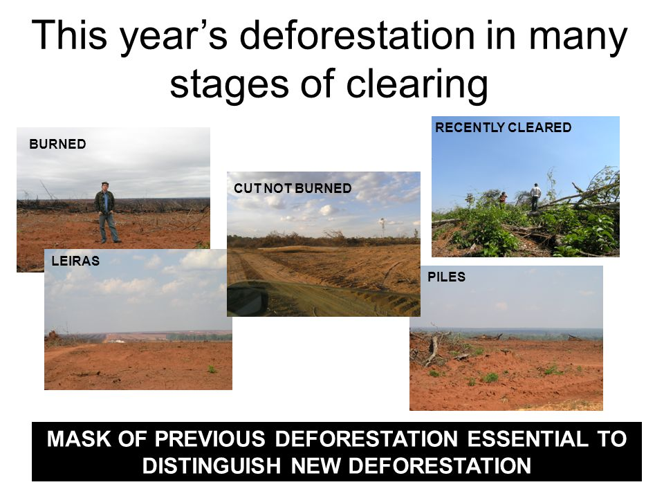 This years deforestation in many stages of clearing MASK OF PREVIOUS DEFORESTATION ESSENTIAL TO DISTINGUISH NEW DEFORESTATION RECENTLY CLEARED BURNED