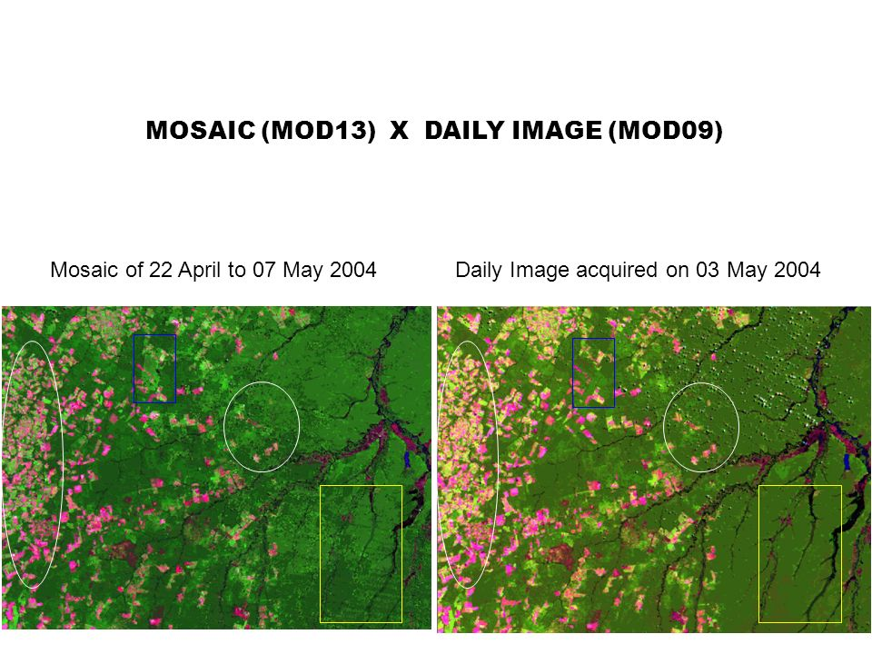 Mosaic of 22 April to 07 May 2004 MOSAIC (MOD13) X DAILY IMAGE (MOD09) Daily Image acquired on 03 May 2004
