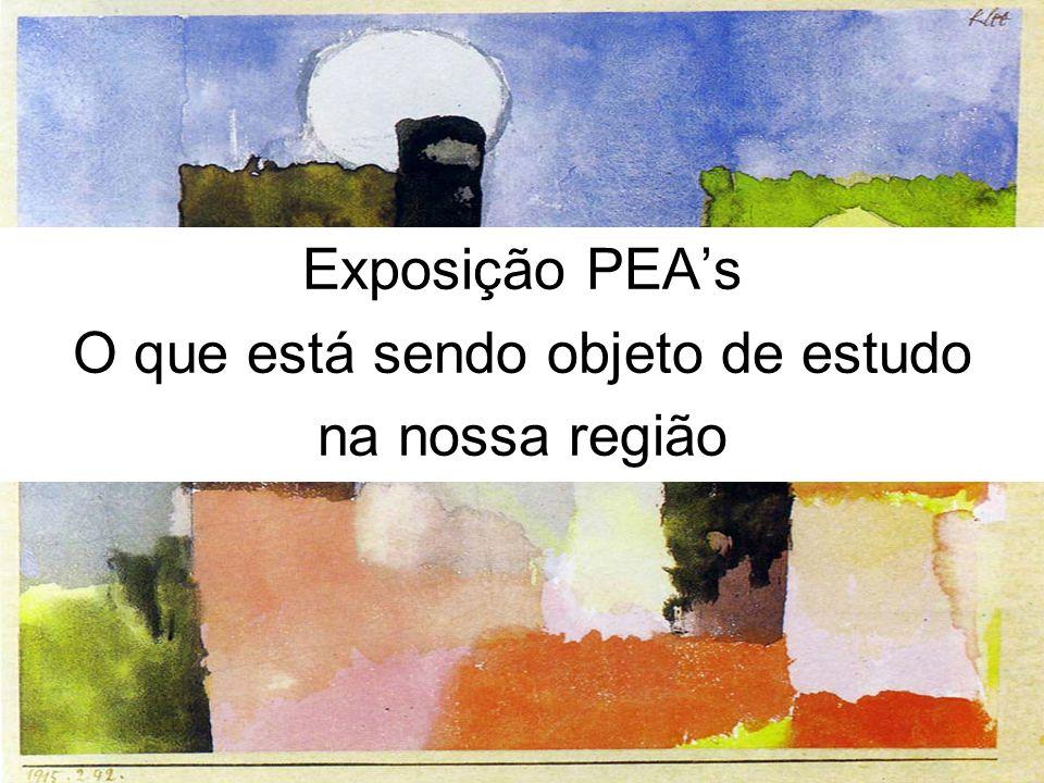Exposição PEAs O que está sendo objeto de estudo na nossa região