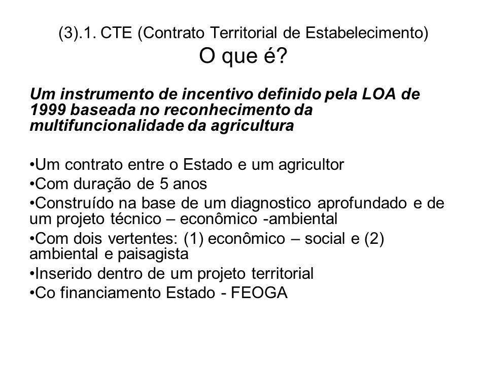(3).1. CTE (Contrato Territorial de Estabelecimento) O que é? Um instrumento de incentivo definido pela LOA de 1999 baseada no reconhecimento da multi