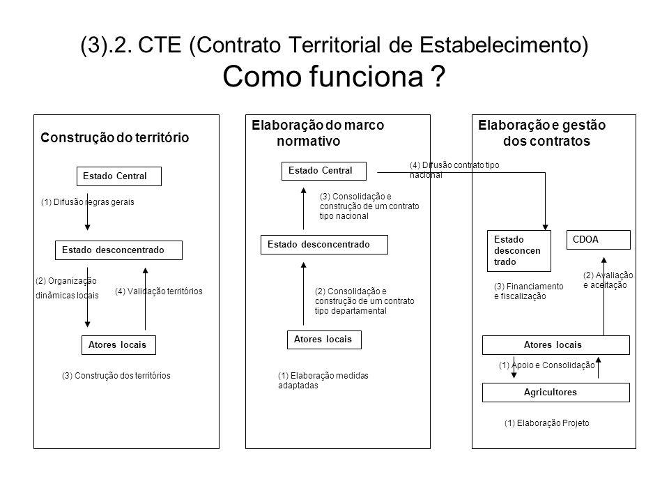 (3).2. CTE (Contrato Territorial de Estabelecimento) Como funciona ? Construção do território Elaboração e gestão dos contratos Elaboração do marco no