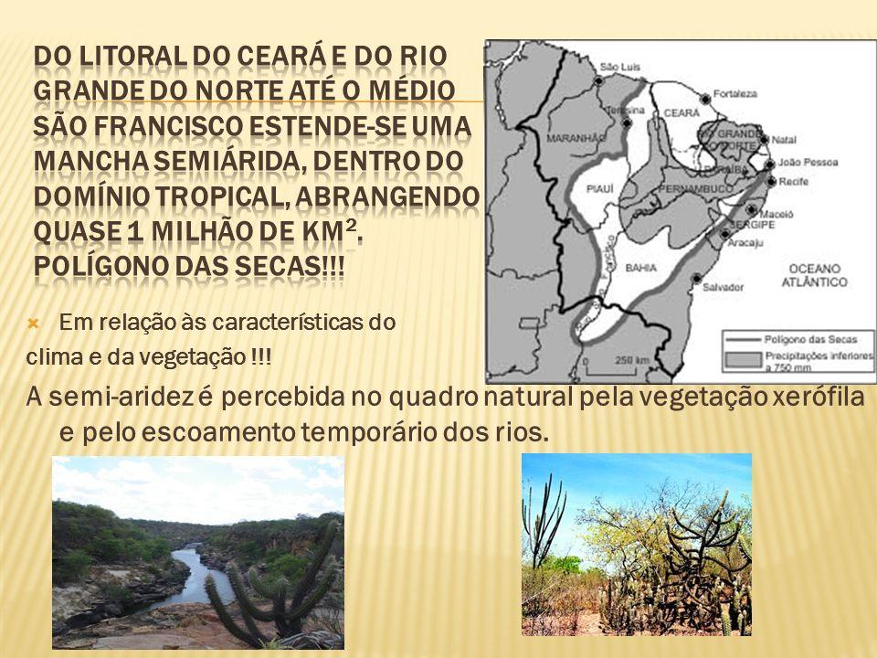 Em relação às características do clima e da vegetação !!.