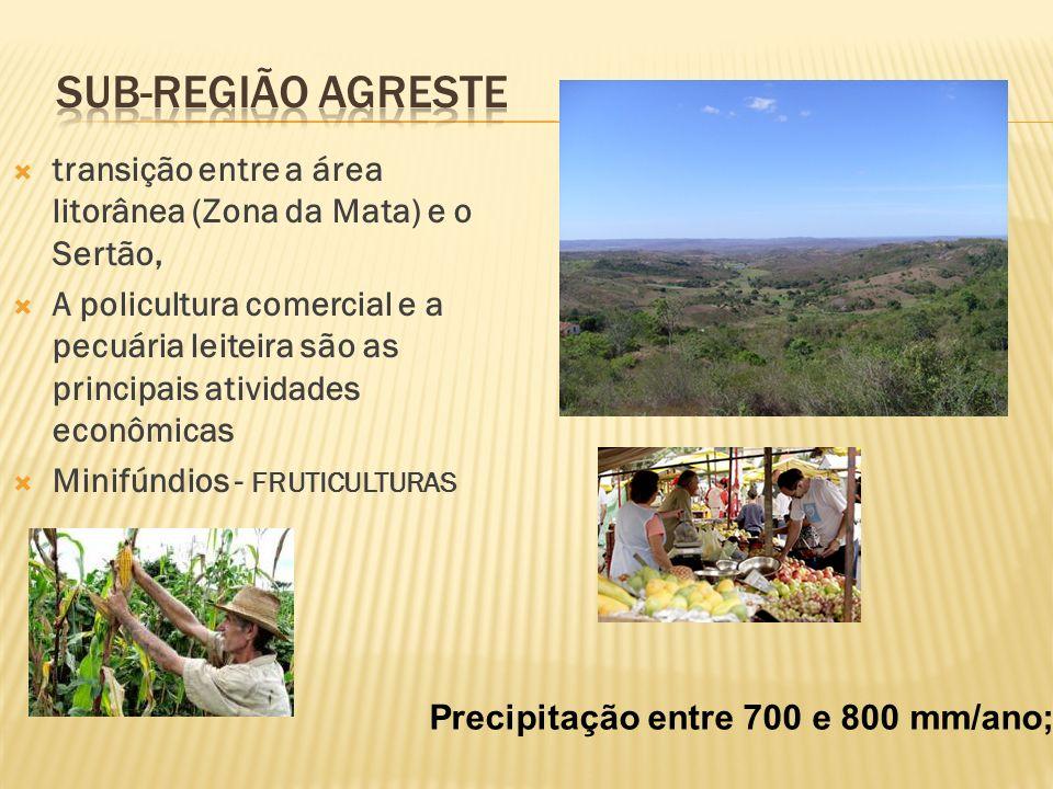 transição entre a área litorânea (Zona da Mata) e o Sertão, A policultura comercial e a pecuária leiteira são as principais atividades econômicas Minifúndios - FRUTICULTURAS Precipitação entre 700 e 800 mm/ano;