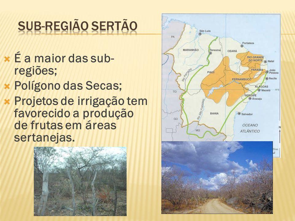É a maior das sub- regiões; Polígono das Secas; Projetos de irrigação tem favorecido a produção de frutas em áreas sertanejas.