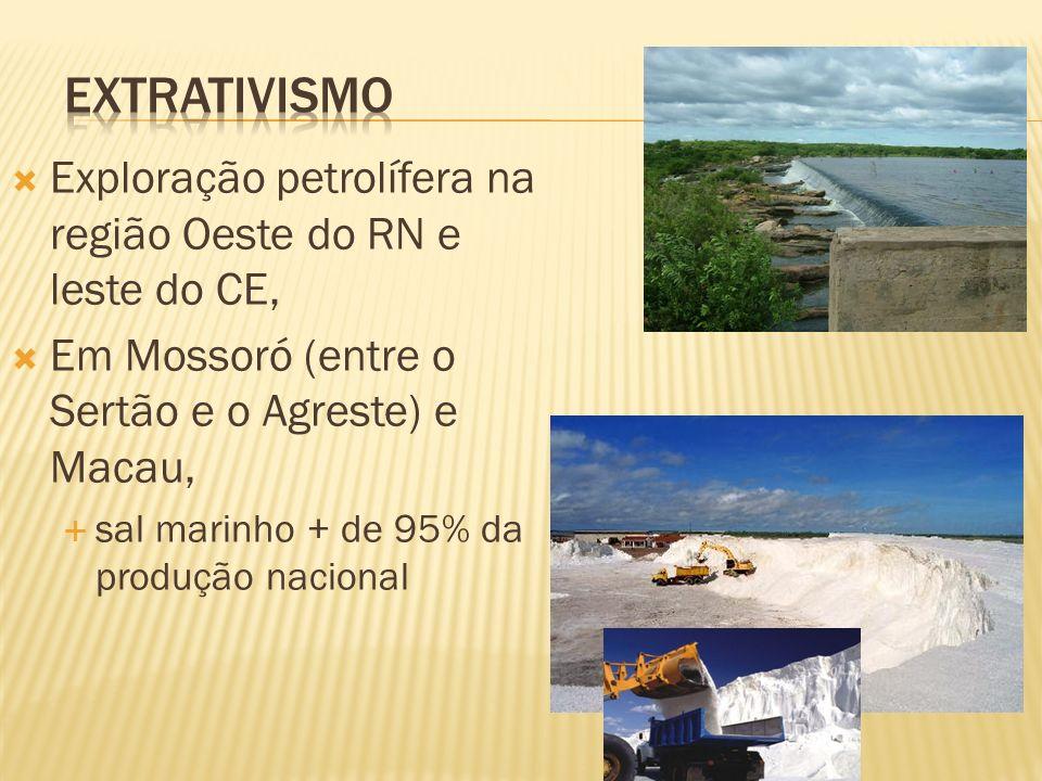 Exploração petrolífera na região Oeste do RN e leste do CE, Em Mossoró (entre o Sertão e o Agreste) e Macau, sal marinho + de 95% da produção nacional
