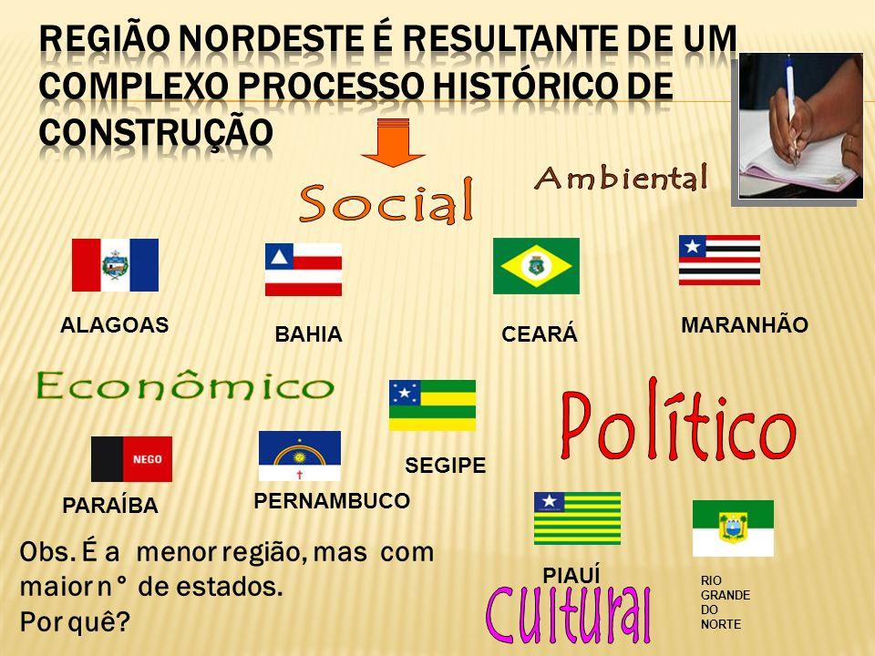 ALAGOAS BAHIACEARÁ PARAÍBA MARANHÃO PERNAMBUCO PIAUÍ SEGIPE RIO GRANDE DO NORTE Obs. É a menor região, mas com maior n° de estados. Por quê?