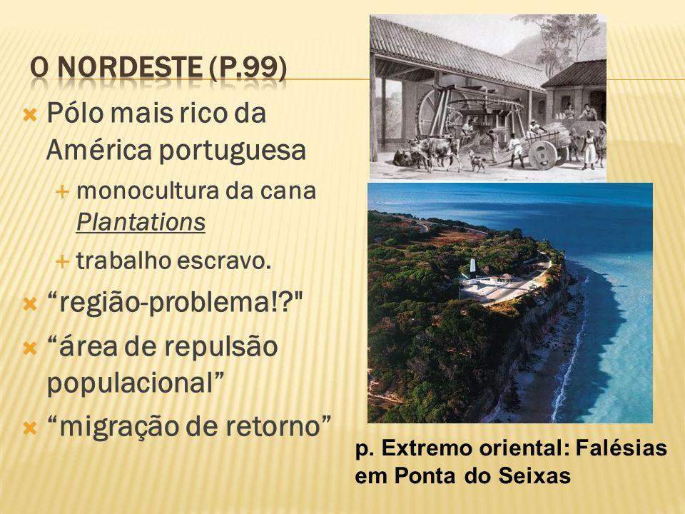 Pólo mais rico da América portuguesa monocultura da cana Plantations trabalho escravo. região-problema!?