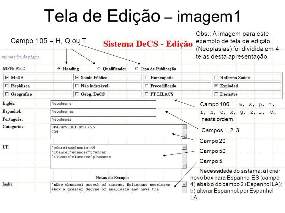 Tela de Edição – imagem1 Campo 105 = H, Q ou T Campo 106 = m, s, p, f, r, n, c, x, g, z, l, d, nesta ordem.