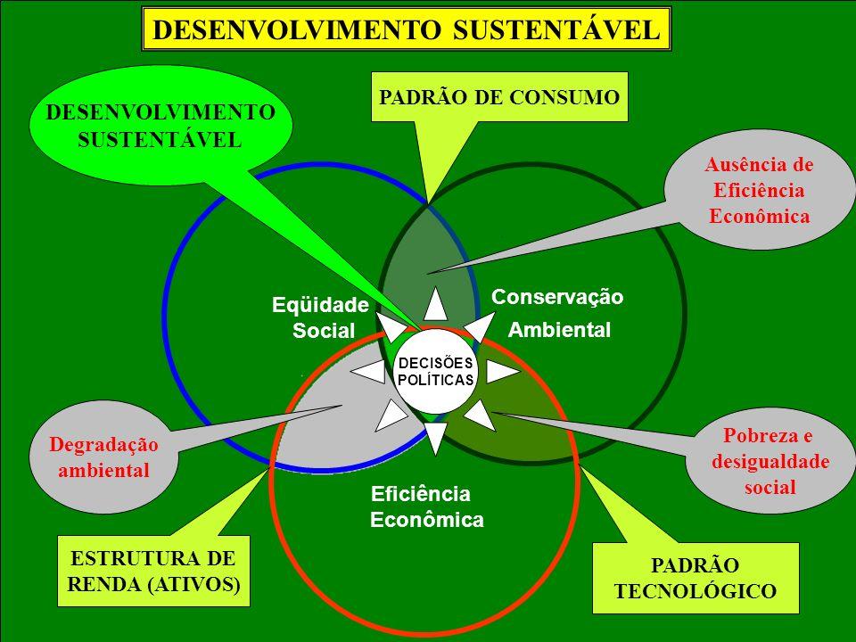 Eqüidade Social Conservação Ambiental Eficiência Econômica Ausência de Eficiência Econômica Pobreza e desigualdade social Degradação ambiental PADRÃO