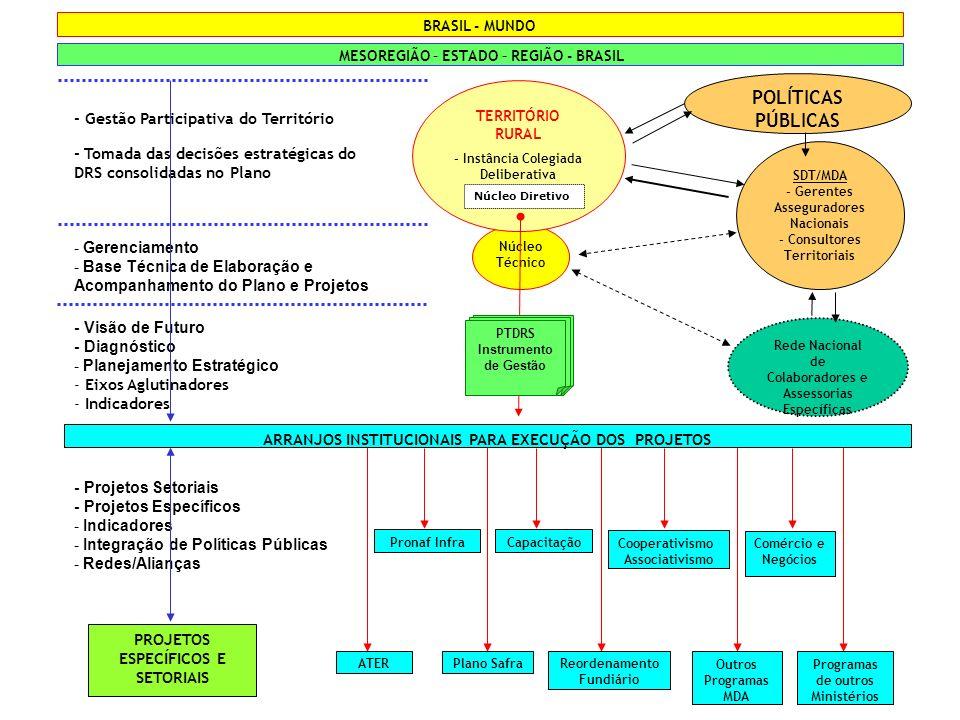 Núcleo Técnico - Gestão Participativa do Território - Tomada das decisões estratégicas do DRS consolidadas no Plano TERRITÓRIO RURAL - Instância Coleg