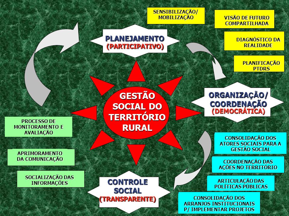 PLANEJAMENTO (PARTICIPATIVO) ORGANIZA ÇÃ O/ COORDENAÇÃO (DEMOCRÁTICA) CONTROLE SOCIAL (TRANSPARENTE) SENSIBILIZAÇÃO/ MOBILIZAÇÃO DIAGNÓSTICO DA REALID