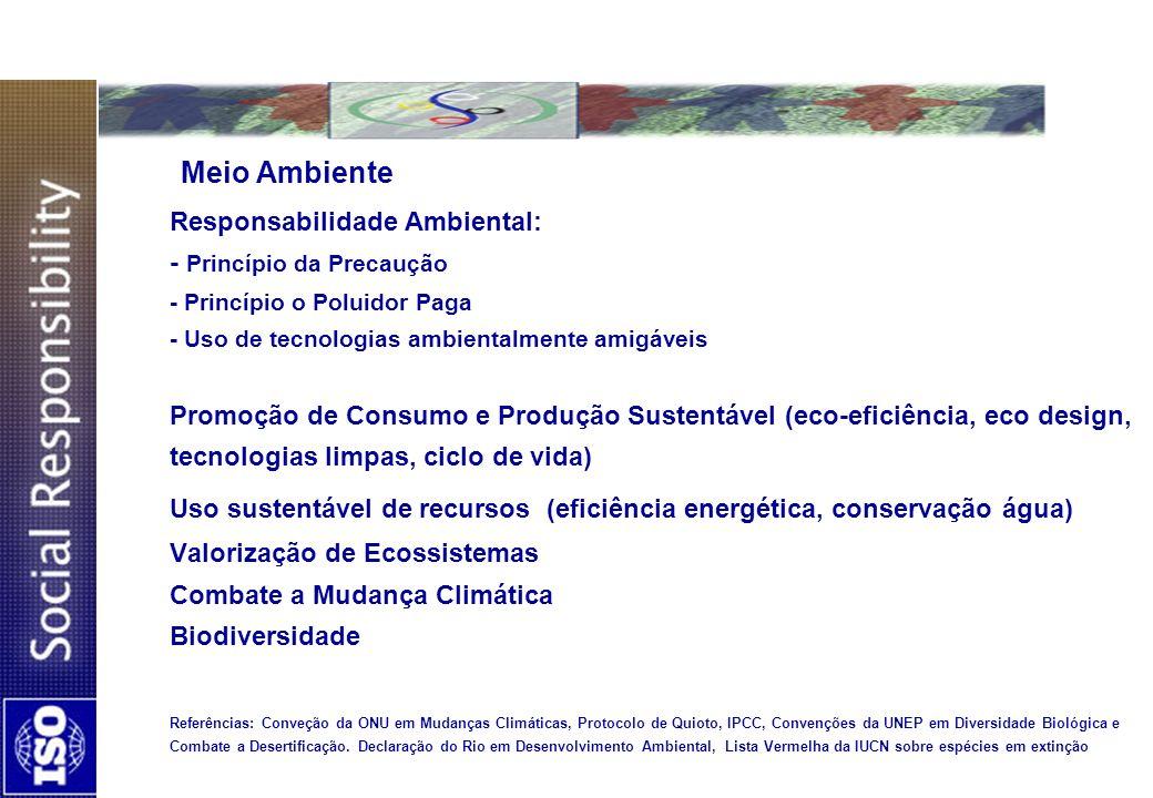 Meio Ambiente Responsabilidade Ambiental: - Princípio da Precaução - Princípio o Poluidor Paga - Uso de tecnologias ambientalmente amigáveis Promoção