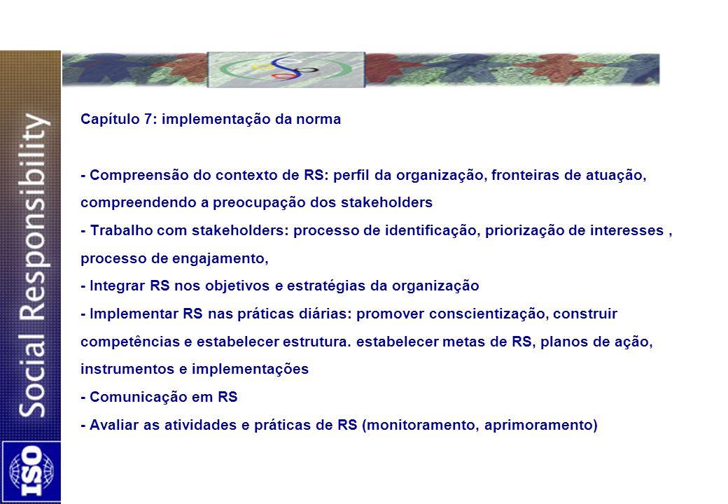Capítulo 7: implementação da norma - Compreensão do contexto de RS: perfil da organização, fronteiras de atuação, compreendendo a preocupação dos stak