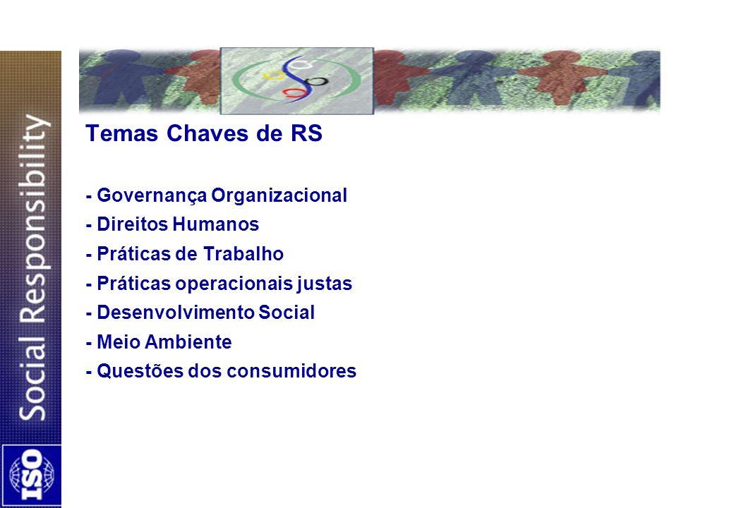 Temas Chaves de RS - Governança Organizacional - Direitos Humanos - Práticas de Trabalho - Práticas operacionais justas - Desenvolvimento Social - Mei