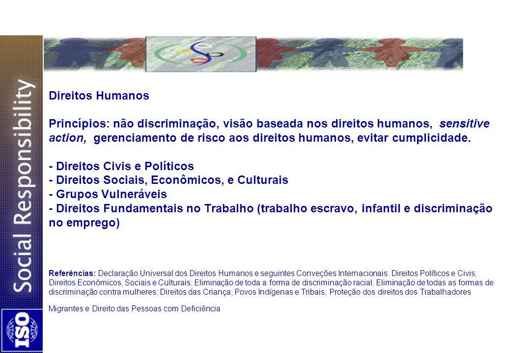 Direitos Humanos Princípios: não discriminação, visão baseada nos direitos humanos, sensitive action, gerenciamento de risco aos direitos humanos, evi