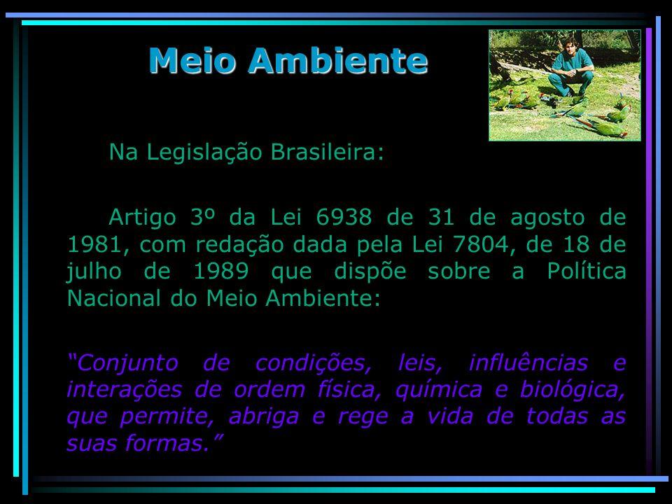 Meio Ambiente Na Legislação Brasileira: Artigo 3º da Lei 6938 de 31 de agosto de 1981, com redação dada pela Lei 7804, de 18 de julho de 1989 que disp