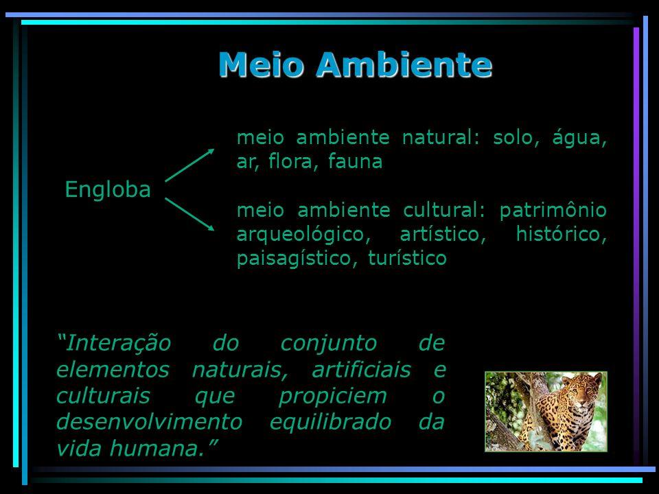 Meio Ambiente Engloba meio ambiente natural: solo, água, ar, flora, fauna meio ambiente cultural: patrimônio arqueológico, artístico, histórico, paisa