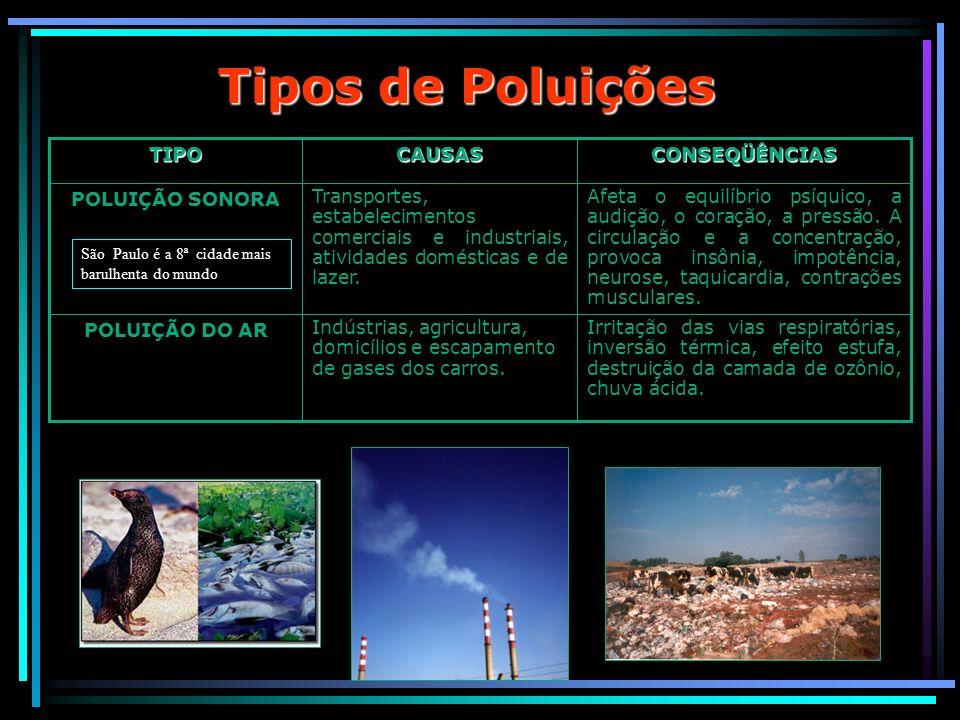 Tipos de Poluições CONSEQÜÊNCIASCAUSASTIPO Irritação das vias respiratórias, inversão térmica, efeito estufa, destruição da camada de ozônio, chuva ác