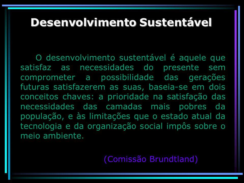 Desenvolvimento Sustentável O desenvolvimento sustentável é aquele que satisfaz as necessidades do presente sem comprometer a possibilidade das geraçõ