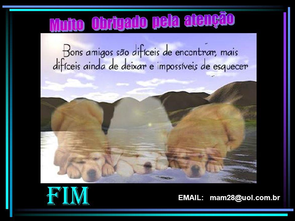 FIM EMAIL: mam28@uol.com.br