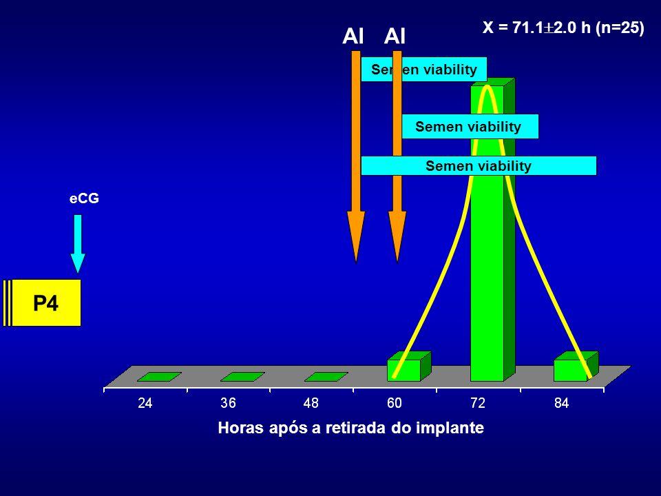 Horas após a retirada do implante X = 71.1 2.0 h (n=25) eCG P4 AI Semen viability AI Semen viability