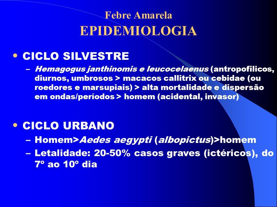 Febre Amarela EPIDEMIOLOGIA CICLO SILVESTRE –Hemagogus janthinomis e leucocelaenus (antropofilicos, diurnos, umbrosos > macacos callitrix ou cebidae (