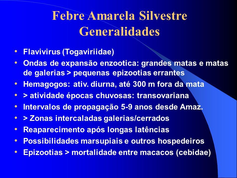 Febre Amarela Silvestre Generalidades Flavivirus (Togaviriidae) Ondas de expansão enzootica: grandes matas e matas de galerias > pequenas epizootias e