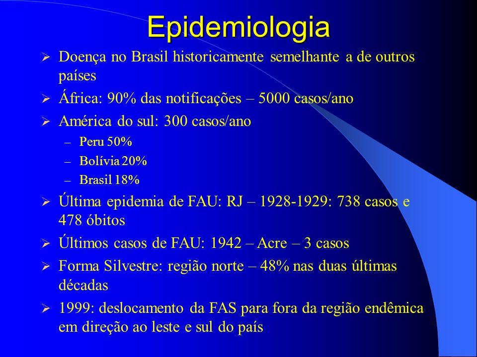 Epidemiologia Doença no Brasil historicamente semelhante a de outros países África: 90% das notificações – 5000 casos/ano América do sul: 300 casos/an