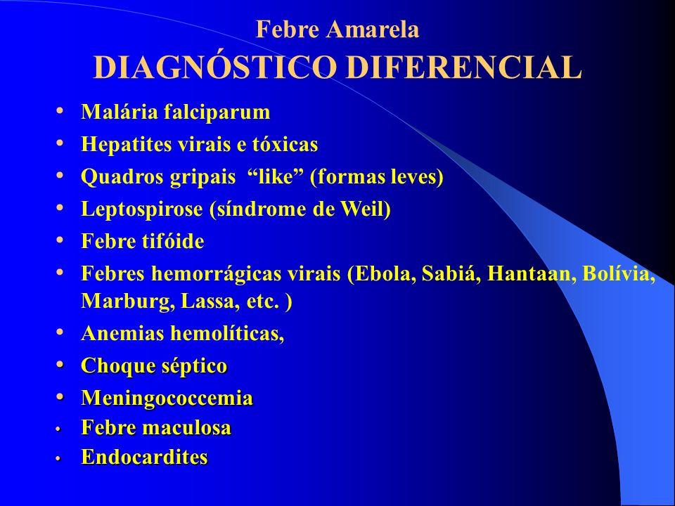 Febre Amarela DIAGNÓSTICO DIFERENCIAL Malária falciparum Hepatites virais e tóxicas Quadros gripais like (formas leves) Leptospirose (síndrome de Weil