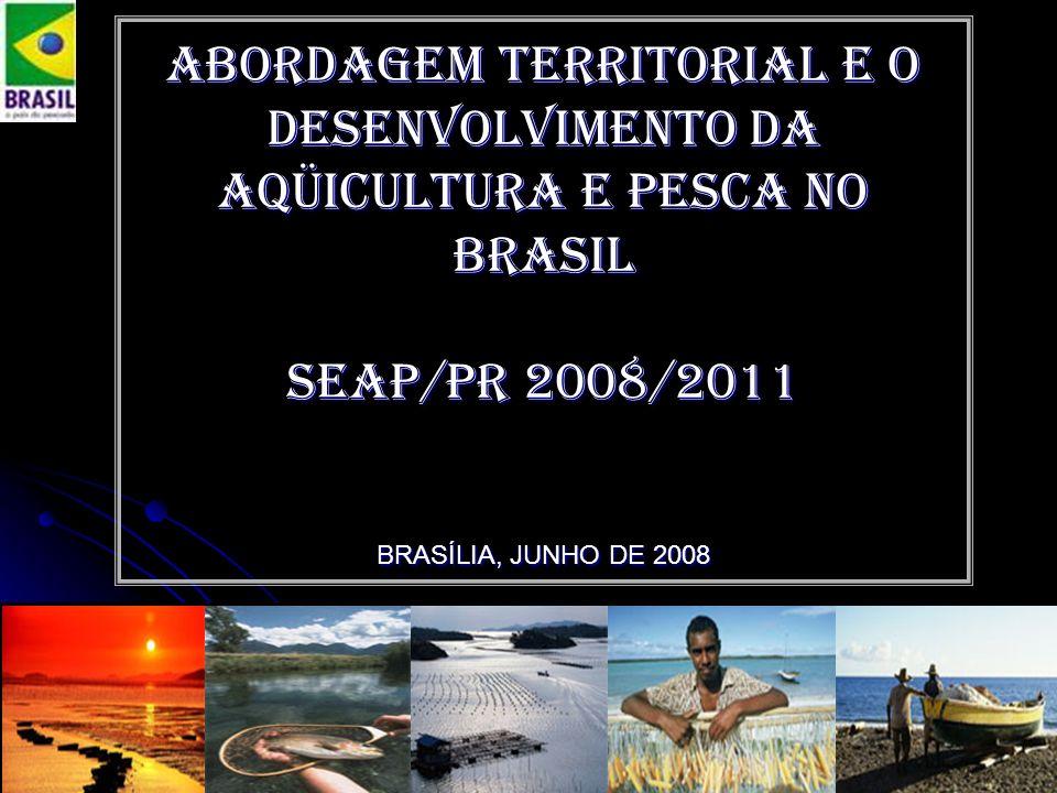 PAULO CESAR ARNS - Convênio SEAP/PR-IADH Abordagem territorial e o Desenvolvimento da aqüicultura e pesca no Brasil Seap/pr 2008/2011 BRASÍLIA, JUNHO