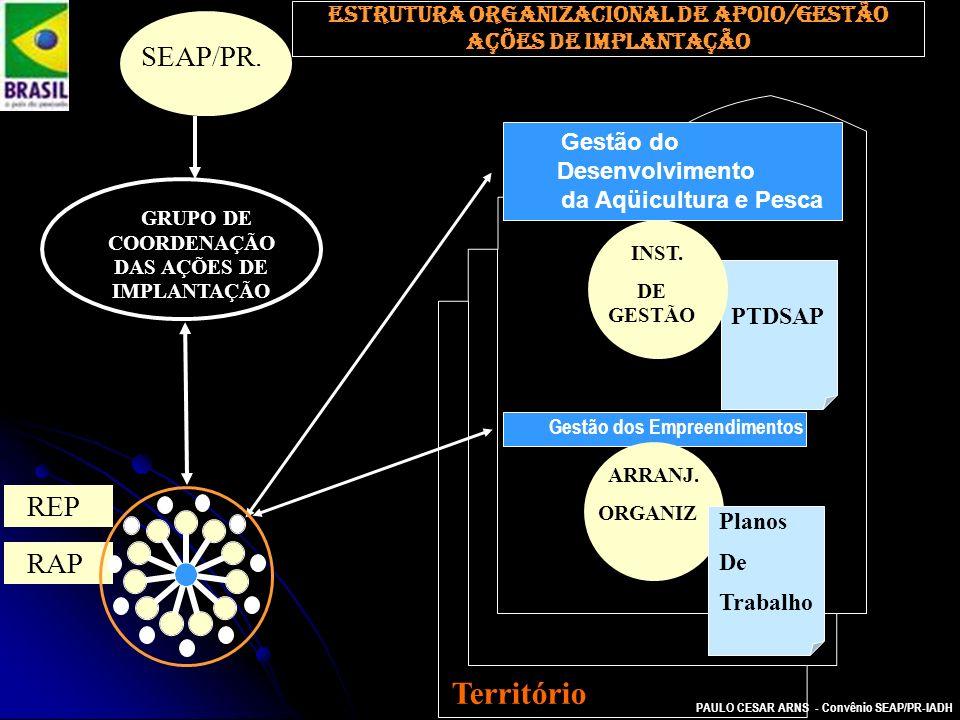 PAULO CESAR ARNS - Convênio SEAP/PR-IADH Estrutura organizacional de apoio/gestão AÇÕES DE IMPLANTAÇÃO REP GRUPO DE COORDENAÇÃO DAS AÇÕES DE IMPLANTAÇ
