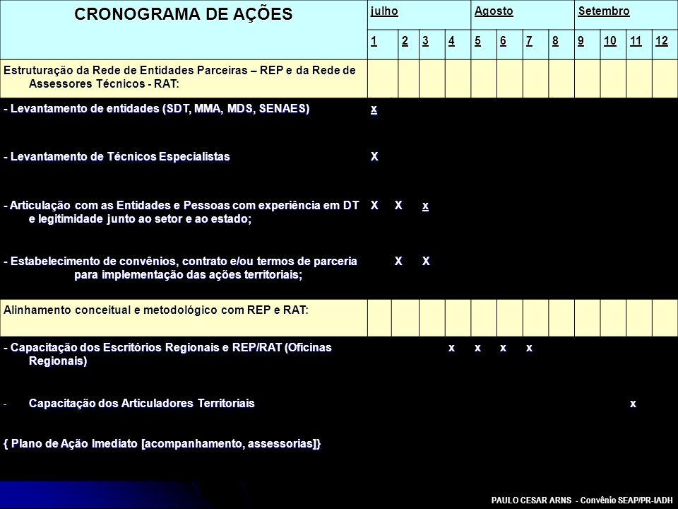 PAULO CESAR ARNS - Convênio SEAP/PR-IADH CRONOGRAMA DE AÇÕES julhoAgostoSetembro 123456789101112 Estruturação da Rede de Entidades Parceiras – REP e d